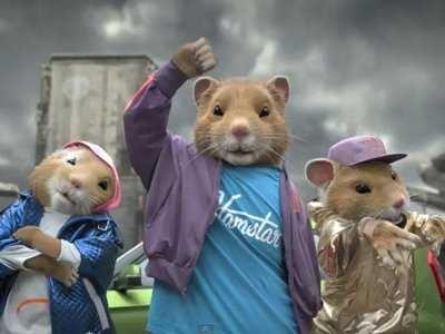 kia-hamsters